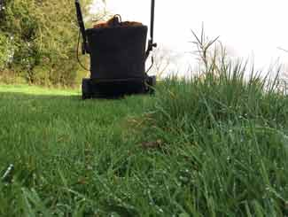 mower cutting wet grass